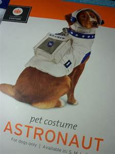 Astronaut Funny Dog - Pics about space