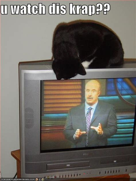 hilarious funny television pictures