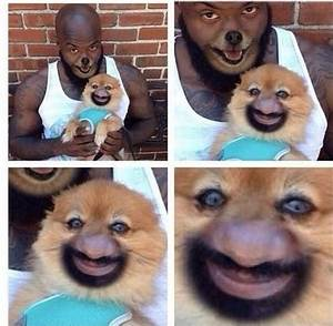 human dog face swap - Meme Collection