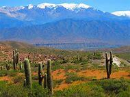 South West Us Desert Landscapes