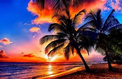 Tropical Nature Beaches Sunrise Desktop Background Sunset