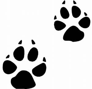 Coyote Paw Prints transparent PNG - StickPNG