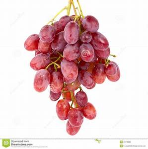 Pink grapes stock photo. Image of juicy, pink, sweet ...