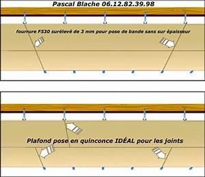 Pose D Un Faux Plafond En Ba13 : plafond suspendu f530 menuiserie image et conseil ~ Melissatoandfro.com Idées de Décoration