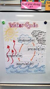 Water Cycle For 2nd Grade
