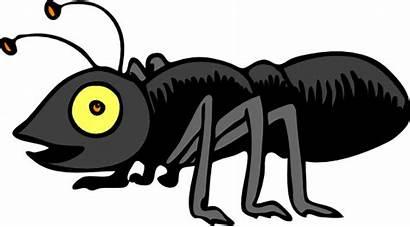 Bug Clipart Clipground Antenna