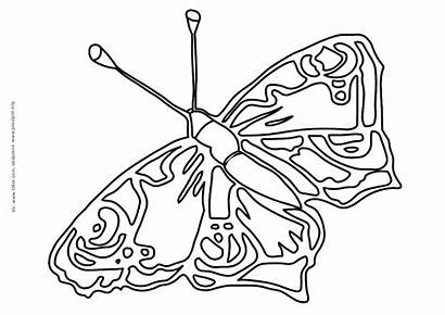 Coloring Butterfly Pobarvanke Metulji Schmetterling Colouring Butterflies