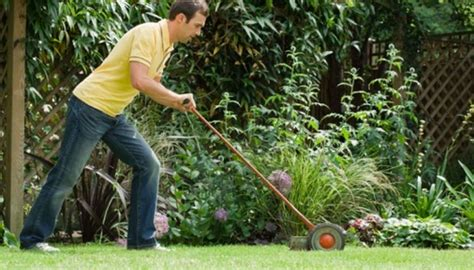 rid  weeds permanently garden guides