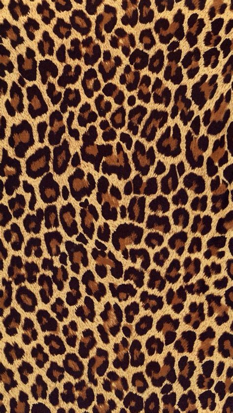 Leopard Animal Print Wallpaper - best 25 leopard print wallpaper ideas on