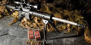 The Best .17 hmr Rifle to Buy in 2017