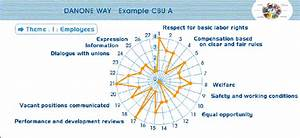 Extract From The Danone Way Intranet  U2013 Results Of The