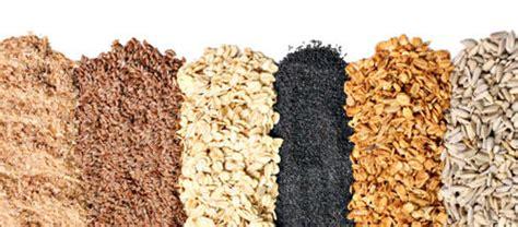 comment cuisiner le millet céréales et graines dans les recettes de cuisine médiévale