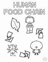 Chain Coloring Preschool Human Craft Craftplaylearn Ladybug Play Printables 7th Learn Printable Kindergarten Looking Animalfood Hauseoffweek Gemerkt Template sketch template