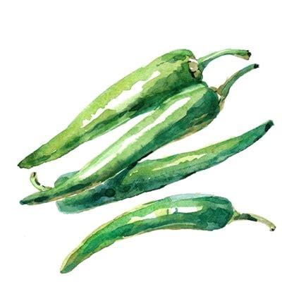 paprika haltbar machen obst und gem 252 se haltbar machen paprika min wurzelwerk