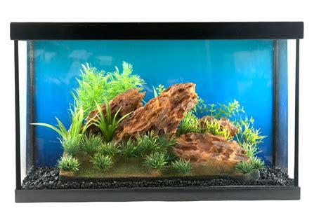 Aquascape Canada by Penn Plax Insta Aquascape 1 Ten Gallon Aquarium