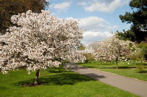 Season In The Gardens Kew
