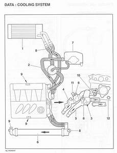 v6 water leak french car forum With citroen engine diagram