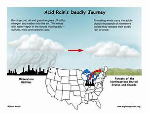 Acid Rain Inquiry  Understanding Ph