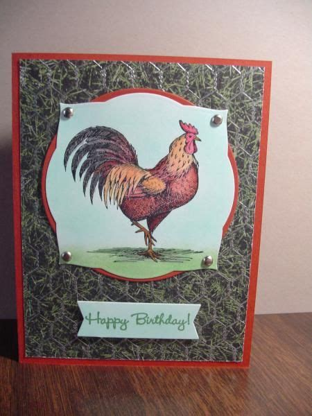 birthday rhode island red roosting  images