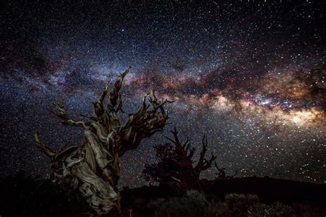 Starry Night Sky High Res California Landscape Milky Way