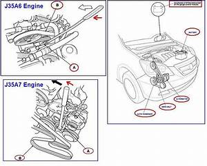 Honda Civic 2007 Belt Diagram
