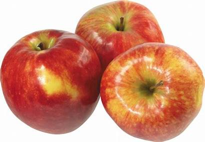 Apple Transparent Apples Purepng