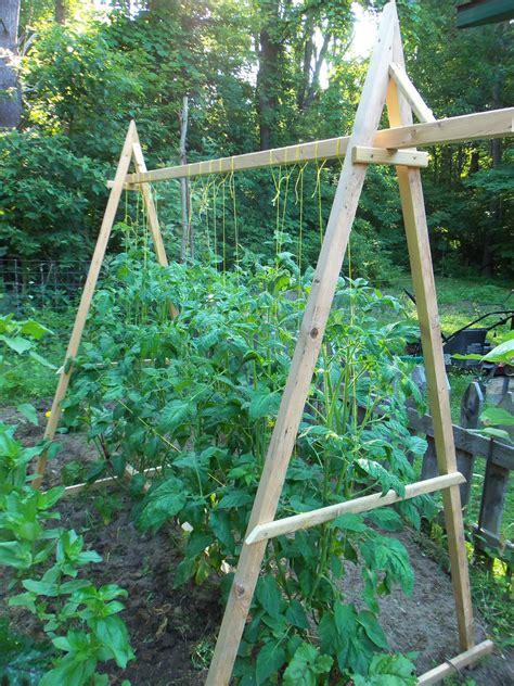 heargrassgrowcom tomato trellis