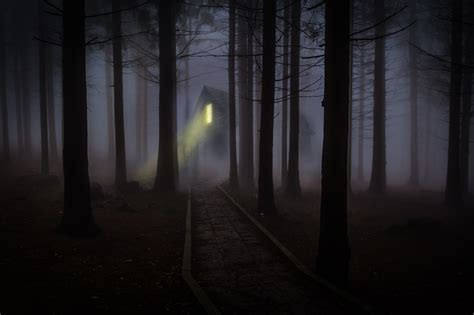 free images forest fog mist night house sunlight morning building dawn atmosphere