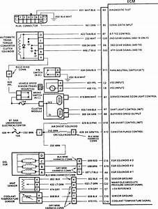 1991 Chevrolet Lumina Ect Wiring  I Would Like To Test The