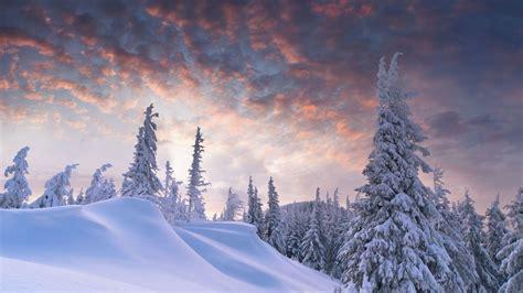 27 nature aesthetic winter desktop wallpaper