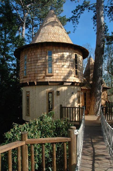 family lives   castlelike treehouse  wait    whats