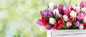 MediaMath Blog - Tips for Mastering Mother's Day 2016