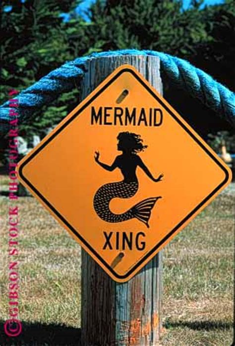 sign mermaid crossing stock photo