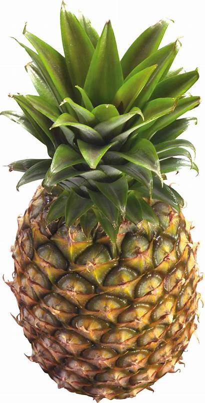 Pineapple Transparent Clipart Pinapple Tropical Apple Background