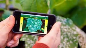 Blumen Erkennen App : schnelle rettung pflanzen krankheiten erkennen per app in technik garten ~ Eleganceandgraceweddings.com Haus und Dekorationen