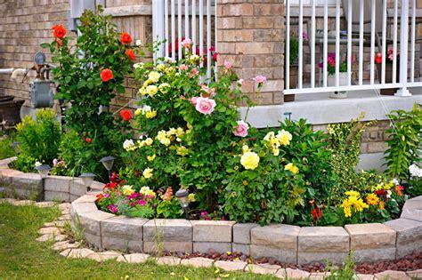 maintenance plants flowers blains farm fleet blog