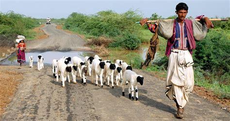 gujarat govt backtracked  promised land titles alleges