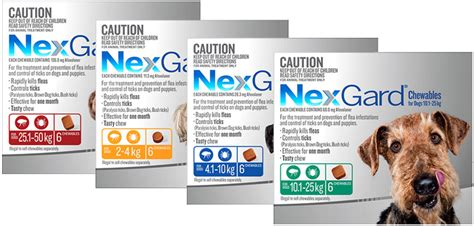 nexgard chewables  dogs killing fleas  ticks
