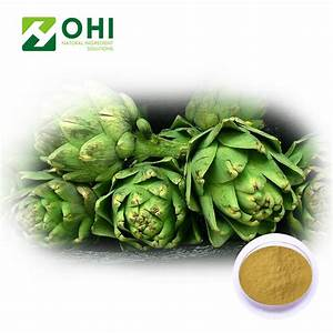 Natural High Quality Factory Supply Organic Jerusalem Artichoke Leaf Seed Extract