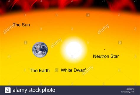 The Earth compared to the Sun, a white dwarf and a neutron ...