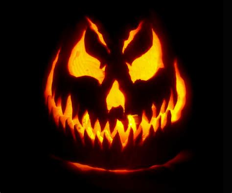jackolantern designs 40 best cool scary halloween pumpkin carving ideas designs images 2016