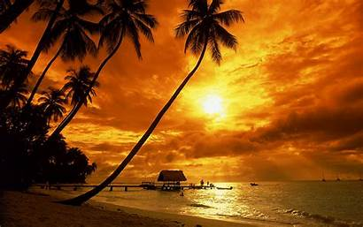Sunset Beach Tropical Desktop Wallpapers Wallpapersafari
