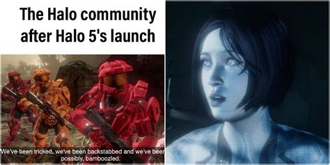 halo memes  fan relates  game rant