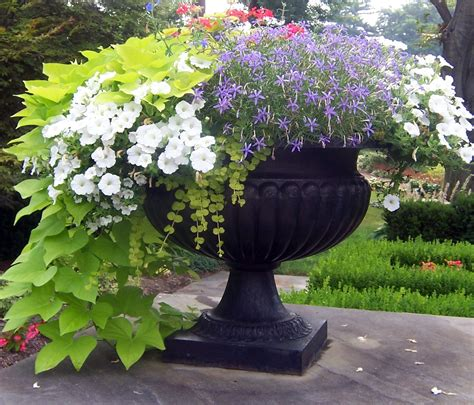 Containers With Pizazz ! Not Your Ordinary Container
