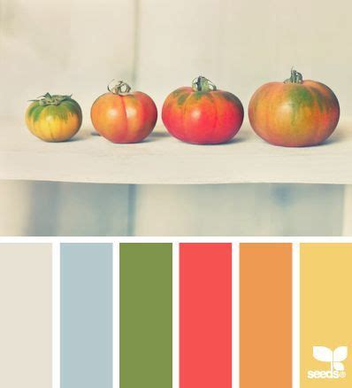 Tomato Red Color Palette