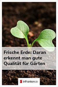 Pflanzen Für Gute Raumluft : egal wo unsere pflanze wachsen eine gute erde ist f r sie ~ A.2002-acura-tl-radio.info Haus und Dekorationen
