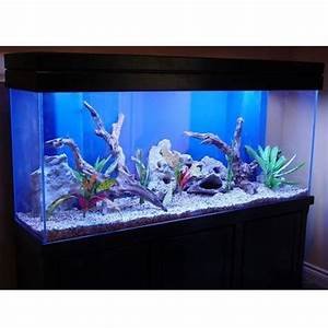 Fancy Seal Fish Tank Glass Fish Tank Manufacturer From Chennai