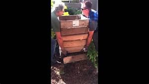 Farmer Arnie Potato Box Harvest