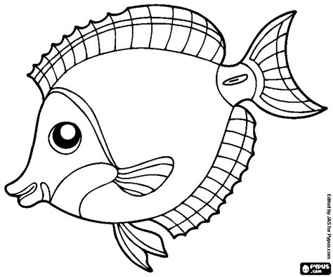 Tropical Fish Coloring Pages by Tropical Fish Coloring Pages Get Coloring Pages
