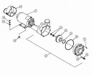 Watkins 71699 Wavemaster Complete Pump
